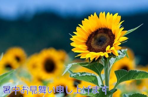 f0248713_11321458.jpg