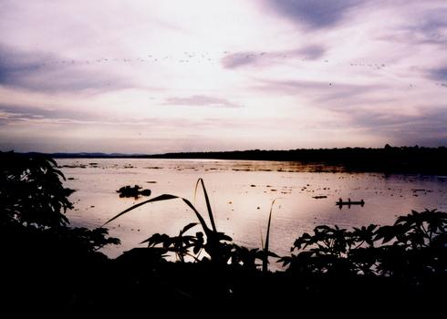 CONGO 1996 (Part 3)_d0010432_139159.jpg
