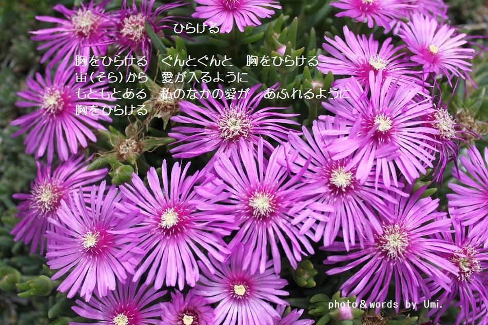 f0351844_09512800.jpg