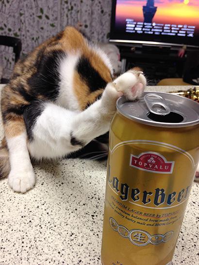 ビール飲んでたら、待った!がかかった。_a0028451_13004369.jpg
