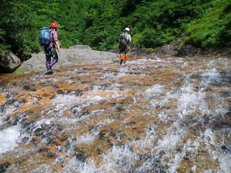 今期2度目の大滝沢 ~ 2014年8月3日_f0170180_20594831.jpg