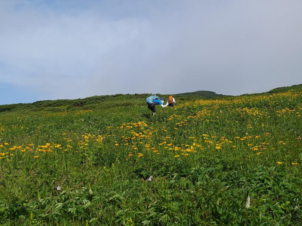 五色岳と忠別岳、8月2日-五色岳編-_f0138096_1822596.jpg
