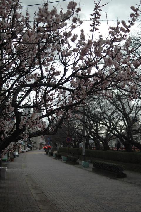 台湾屋台_e0115904_19485173.jpg