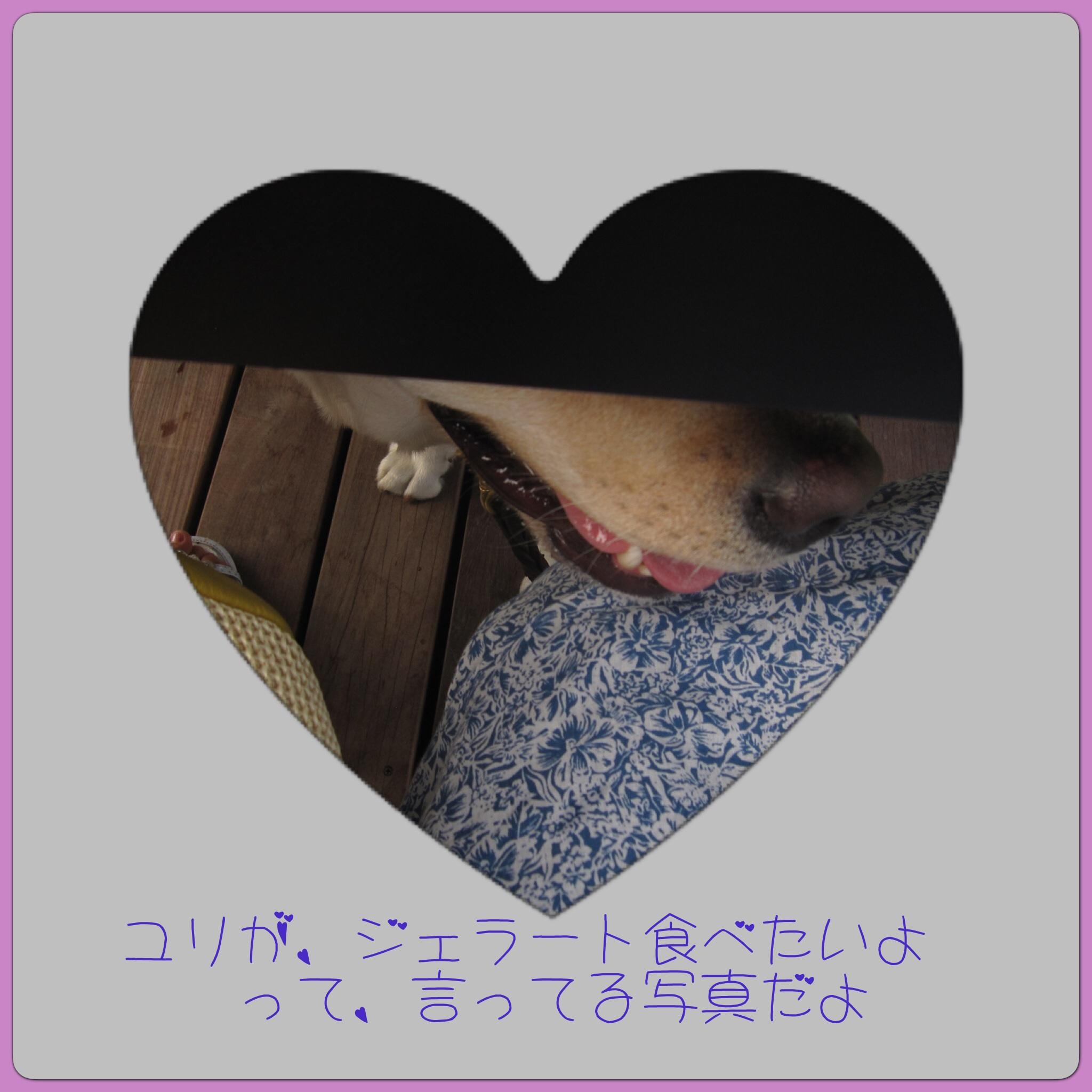 e0244621_0361326.jpg