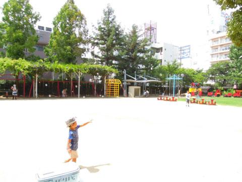 園庭開放でした_d0053323_15293868.jpg