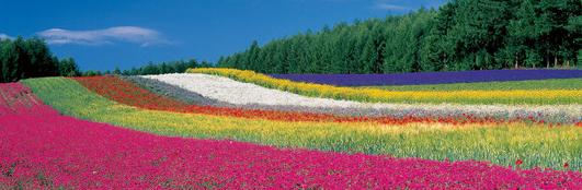 2014 北海道 HOKKAIDER~5 - 夫婦ぅタンデムツー_c0261447_22152917.jpg