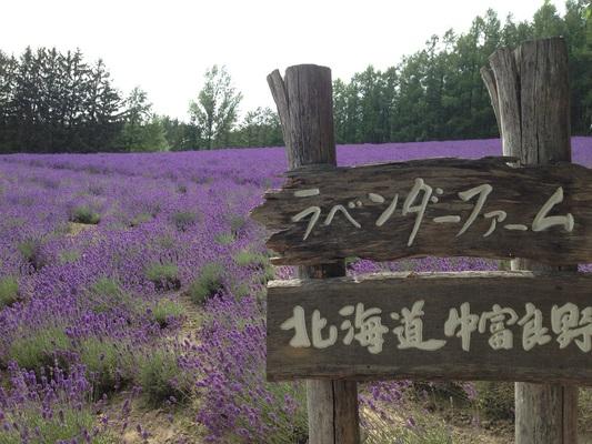 2014 北海道 HOKKAIDER~5 - 夫婦ぅタンデムツー_c0261447_22195369.jpg