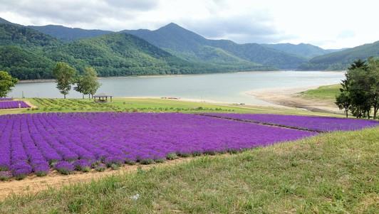 2014 北海道 HOKKAIDER~5 - 夫婦ぅタンデムツー_c0261447_23282457.jpg
