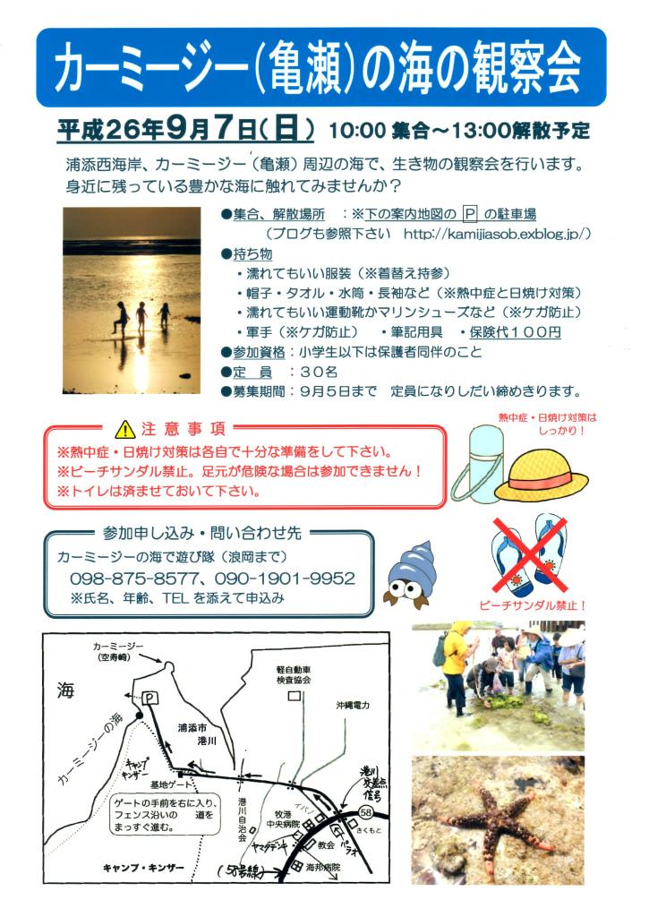夏休みのお手伝い_c0180460_1523678.jpg