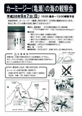 夏休みのお手伝い_c0180460_1592625.jpg