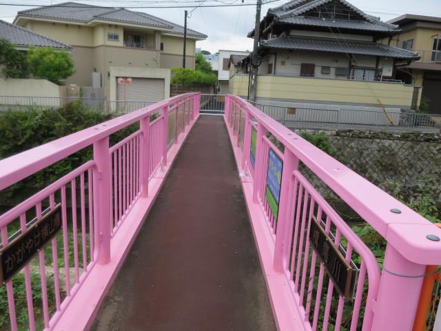 和泉市に行きたくなるブログ_c0001670_21103846.jpg