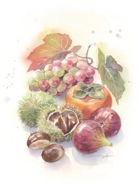 autumn fruit 水彩画_f0176370_1693197.jpg