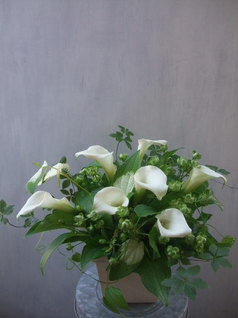 オークリーフ(白いカラーを入れたアレンジメント)_f0049672_17114928.jpg