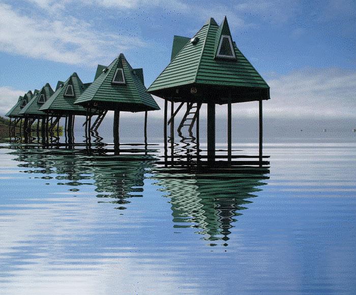 水に映る_d0162994_1023841.jpg