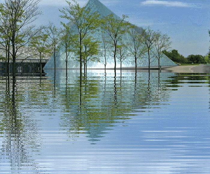 水に映る_d0162994_102824.jpg
