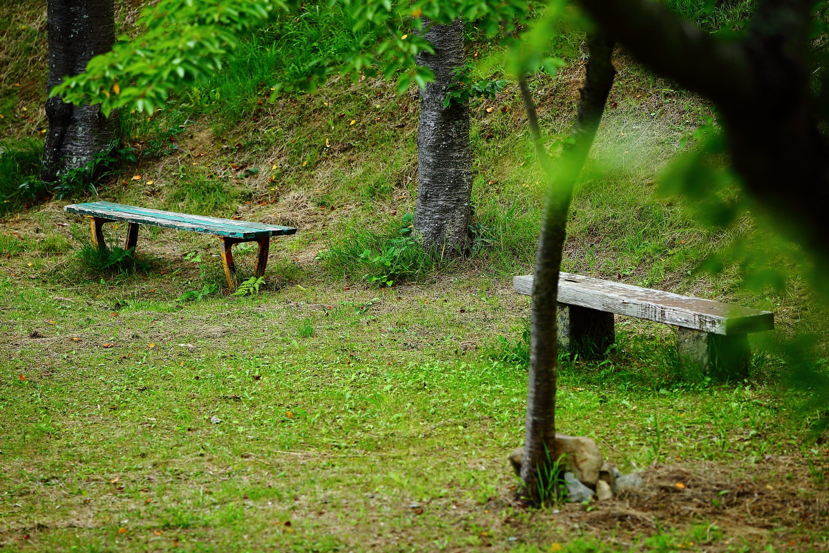 僕の夏休みは石巻から始まった_a0274805_23313904.jpg