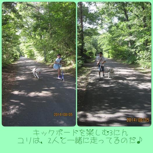 e0244621_10573452.jpg