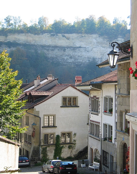 Fribourg_a0086828_1433522.jpg
