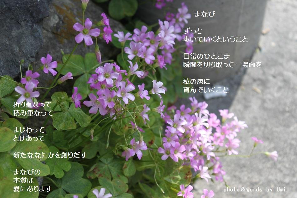 f0351844_06385424.jpg