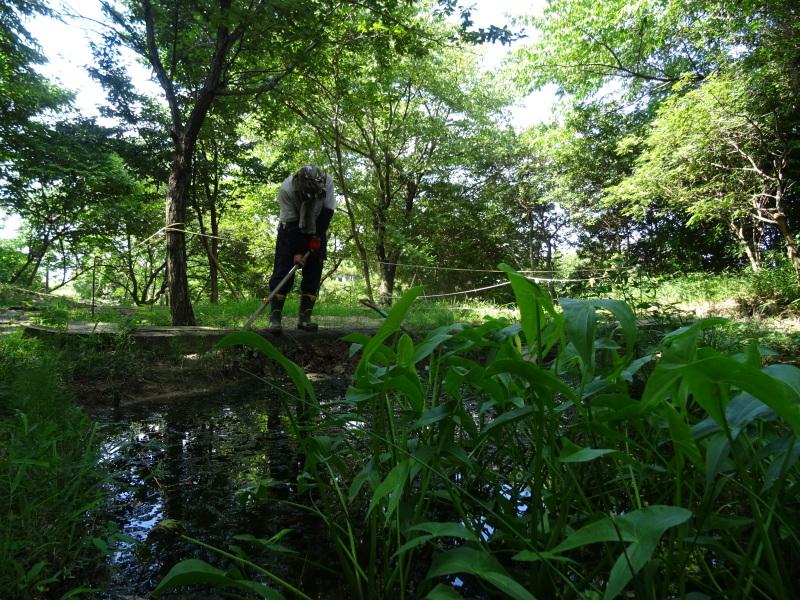 ちょこっと一人作業  in  うみべの森     by     (TATE-misaki)_c0108460_17254387.jpg