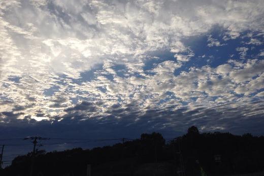 2014年8月7日(木):最後はウロコ雲[中標津町郷土館]_e0062415_1974239.jpg