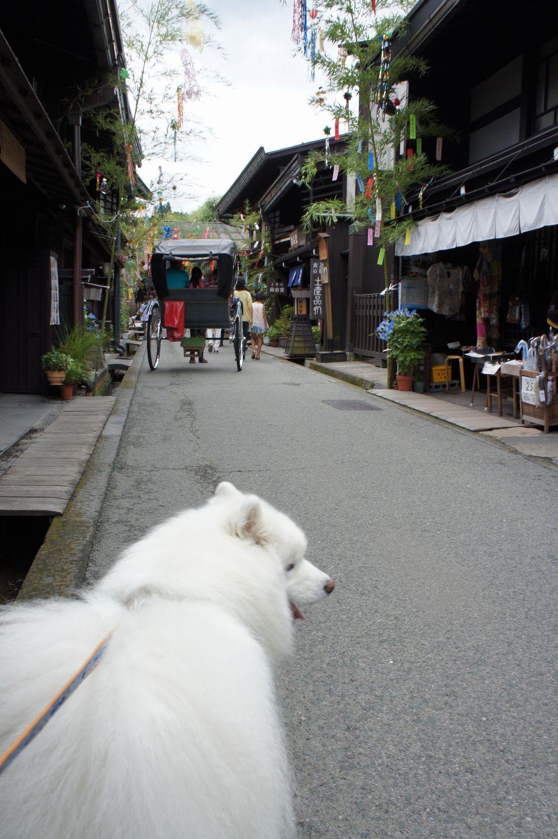 2014年 草津~奥飛騨旅行 その3_f0128542_3102642.jpg