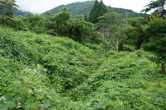 2014年 草津~奥飛騨旅行 その3_f0128542_371361.jpg
