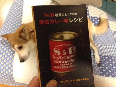 赤缶カレー粉レシピ_f0232994_1302071.jpg