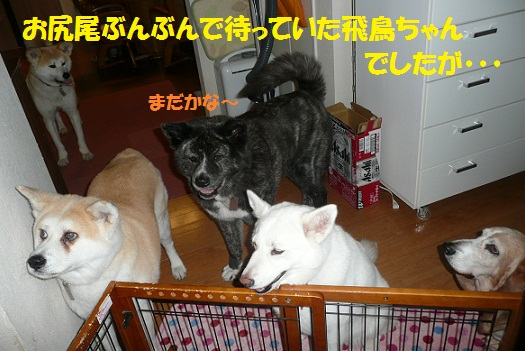 f0121712_15235557.jpg