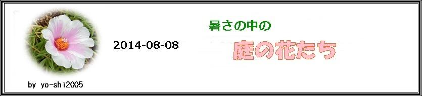 e0033229_2033197.jpg