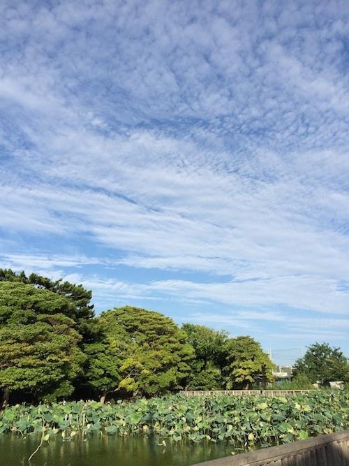 真夏の鵠沼で、真鍋太郎の作品展_c0113755_01370283.jpg