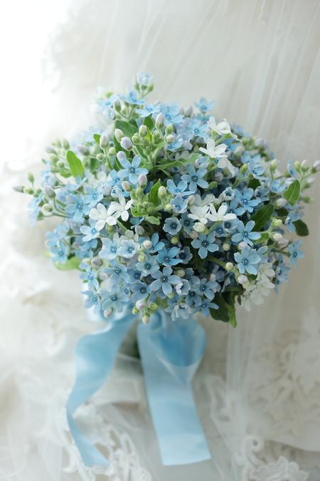 水色のクラッチブーケ パレスホテル様へ ブルースターの花だけで_a0042928_94425100.jpg
