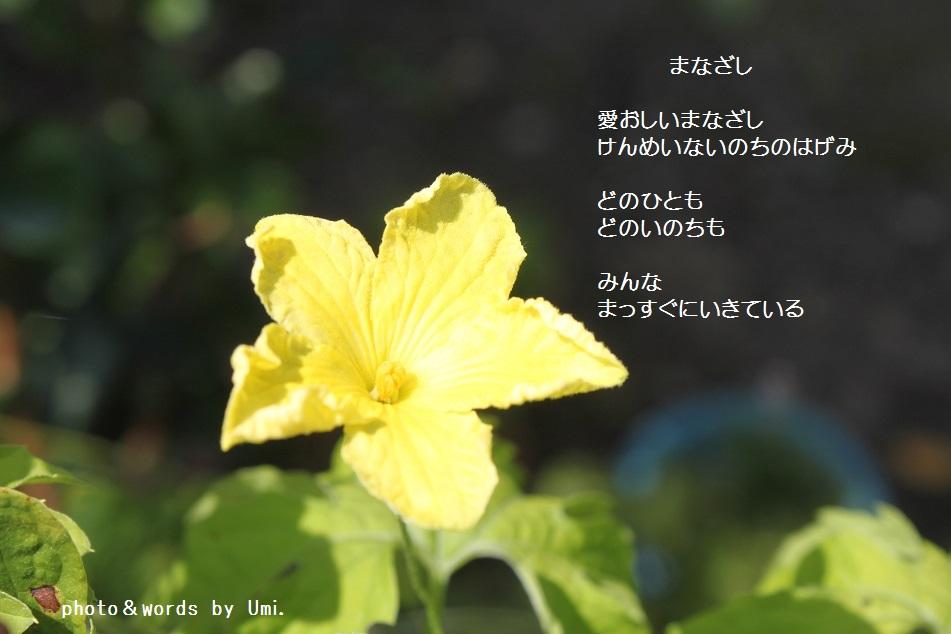 f0351844_09330451.jpg