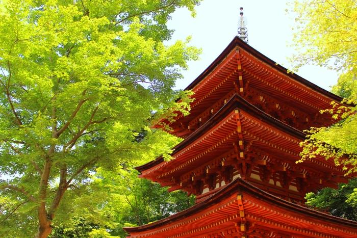 当尾の里 ~その2 浄瑠璃寺~_e0232054_1495765.jpg