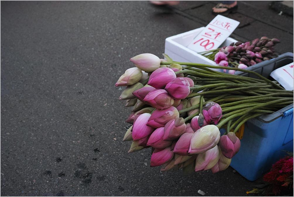 今夜は花市 flowers for Ulambana #DP2 Quattro_c0065410_23163641.jpg