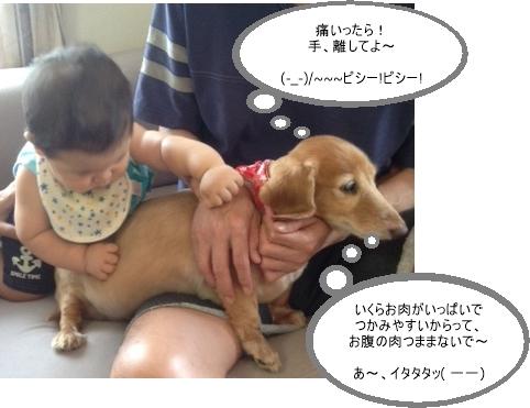 ばななと孫っち_c0237493_11145180.jpg