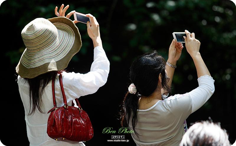 軽井沢「 白糸の滝 」を見て思う事..._c0210599_23221398.jpg