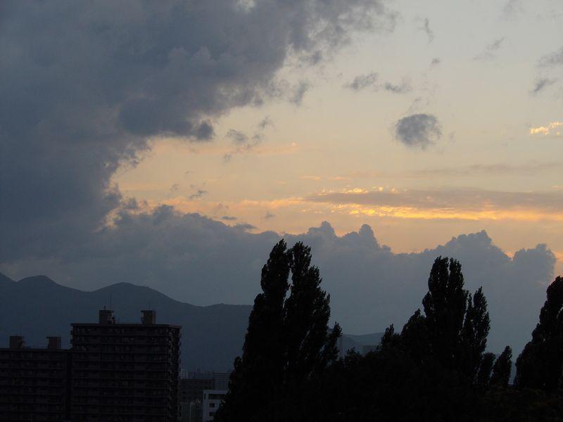 なかなか風がおさまらない札幌_c0025115_19293.jpg