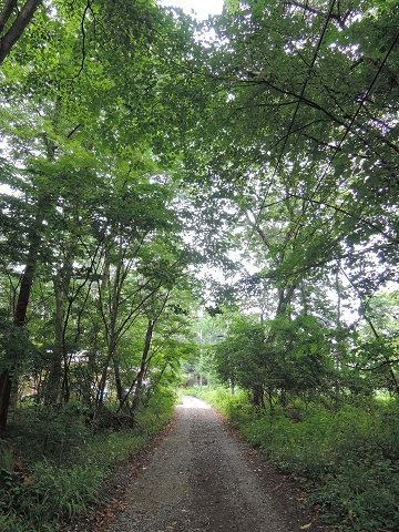 長坂町H野さん邸の現場より 12_a0211886_0353666.jpg
