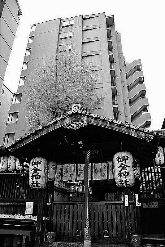 京巡りXVII_b0314043_07490686.jpg