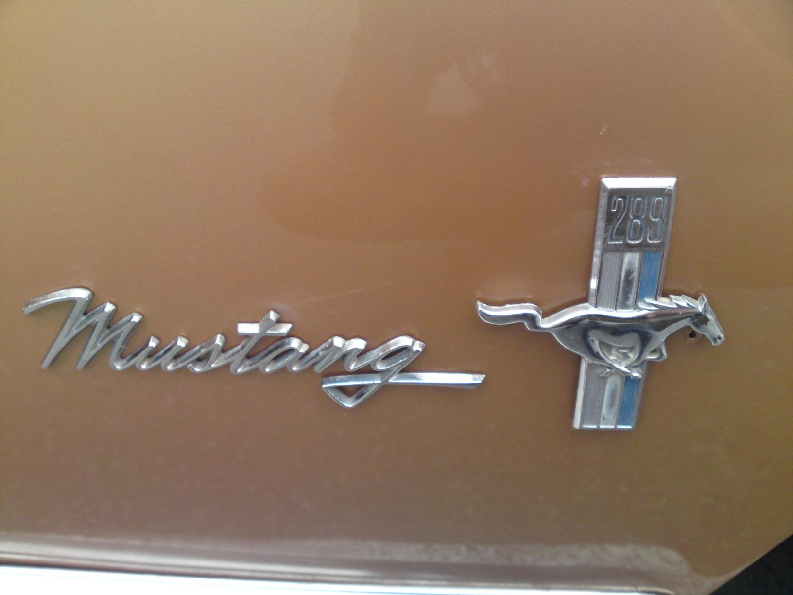 '68 Mustang_b0153544_10431897.jpg