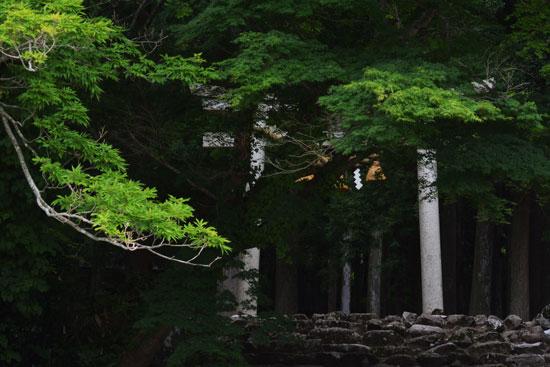 石動山にて(2)_c0093046_810619.jpg