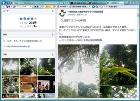 大学生が書く、大温室の大雨スコール体験!_f0203094_16434567.jpg