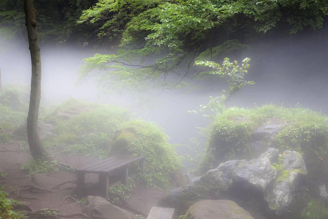 元滝伏流水〔秋田県〕、その2_c0077395_18442357.jpg