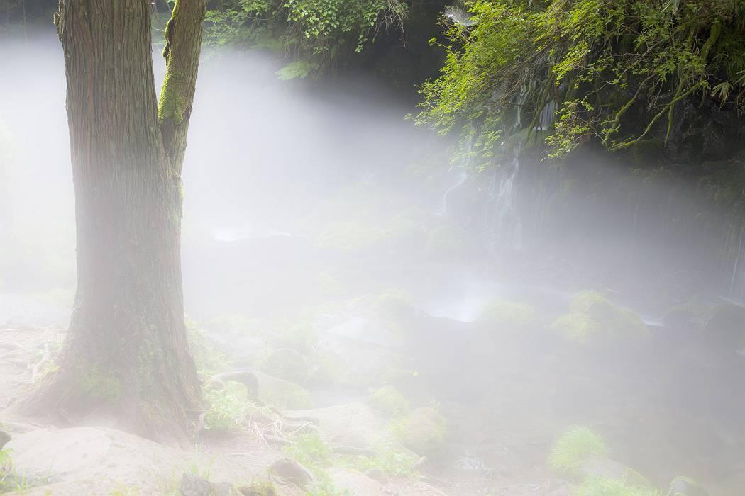 元滝伏流水〔秋田県〕、その2_c0077395_18453211.jpg