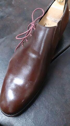 靴の中が森林に…_b0226322_19511685.jpg