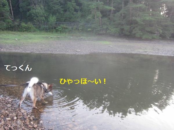 f0143123_1441259.jpg