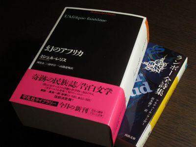 読書メモ:ミシェル・レリス『幻...