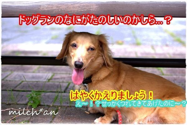 b0115642_23263045.jpg