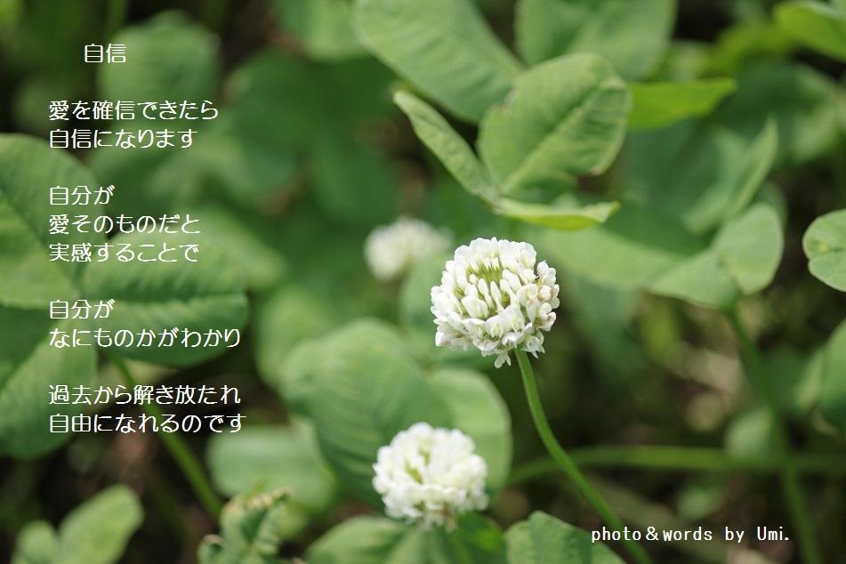 f0351844_06391060.jpg